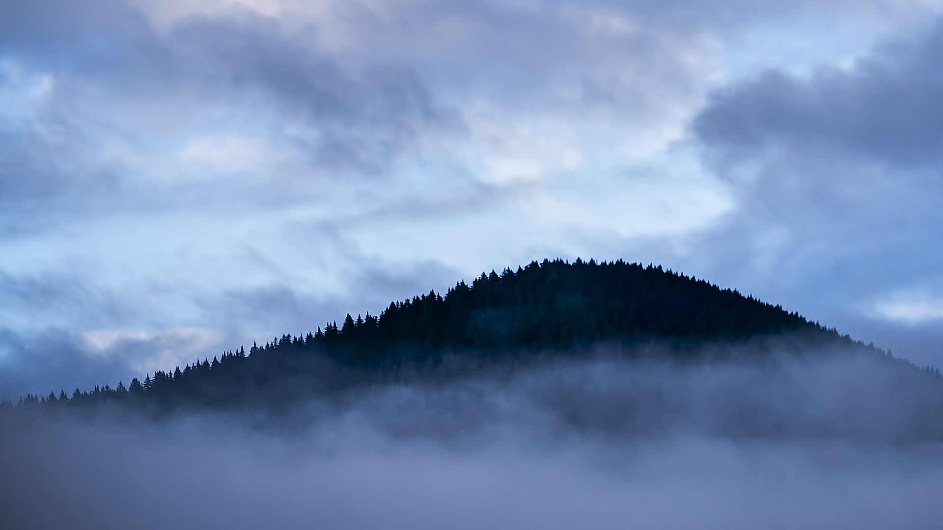 Mountains in fog near Tofino, Vancouver Island, Canada