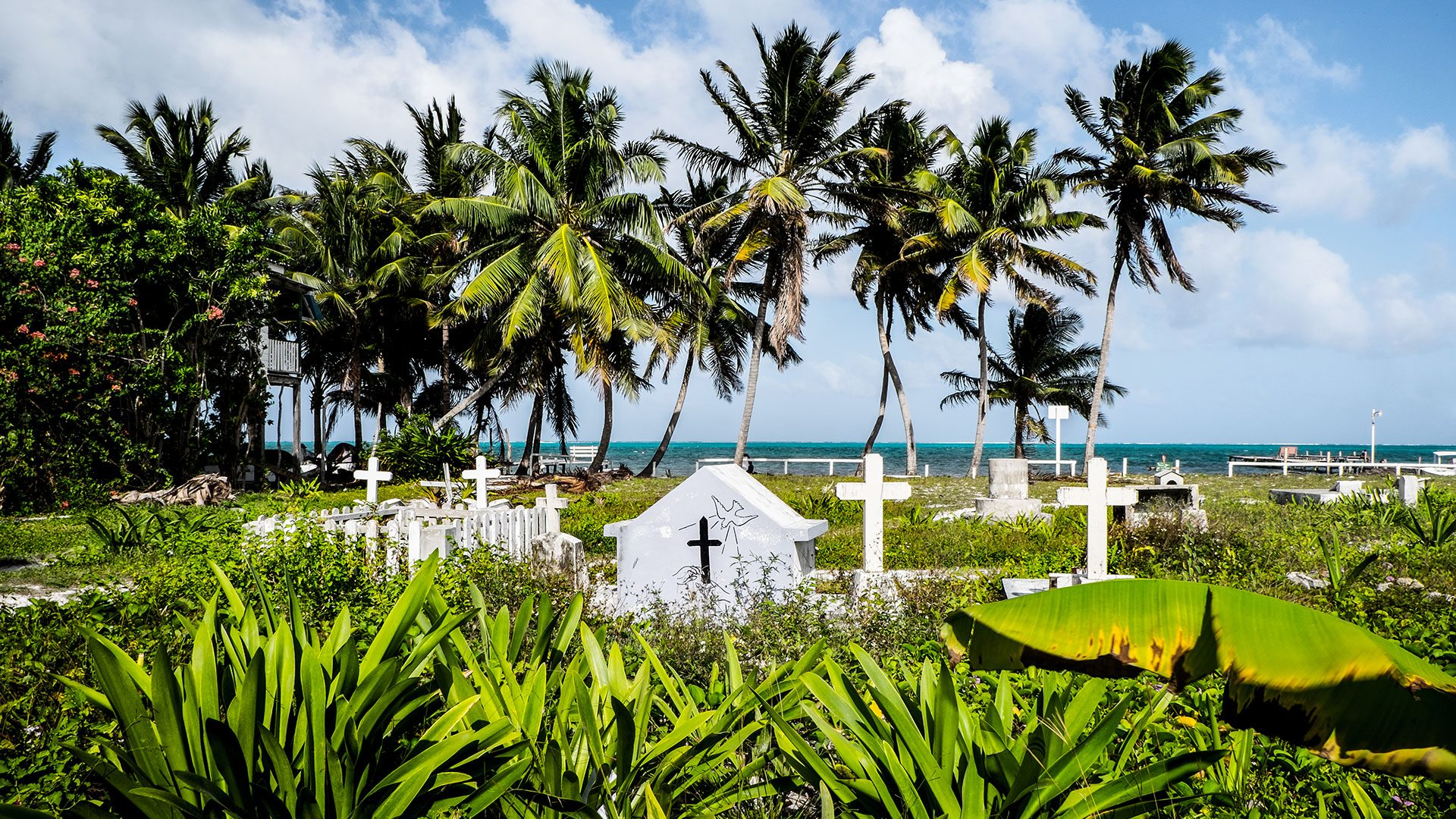 Tropical Cemetery, Caye Caulker Island, Belize